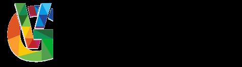 Vasi Group Kft logo